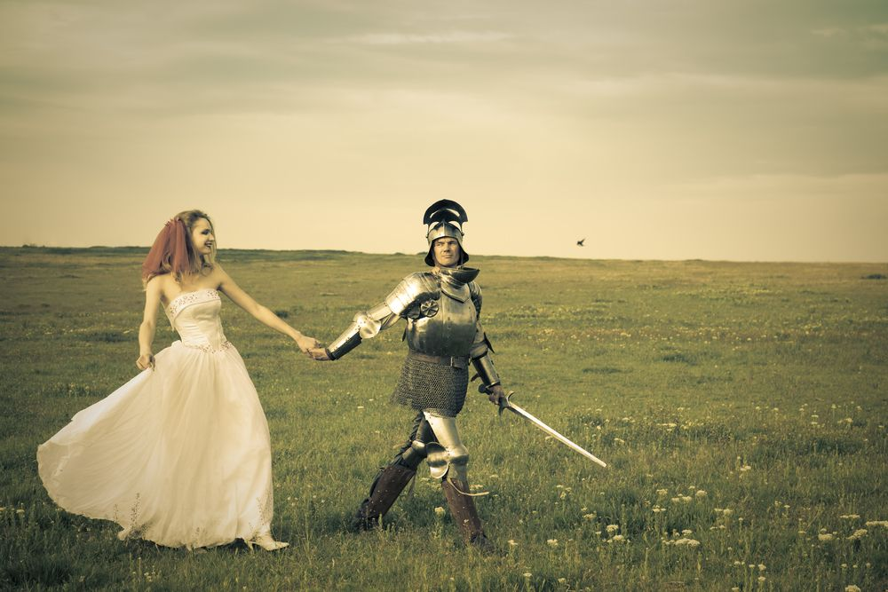 knight and princess